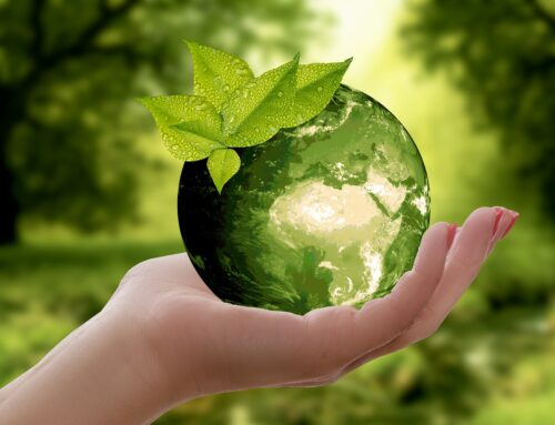 """La Sostenibilità per le imprese non è più un """"optional"""""""